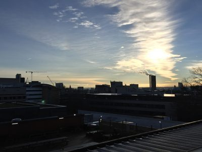 Leeds air pollution could be tackled with rooftop gardens